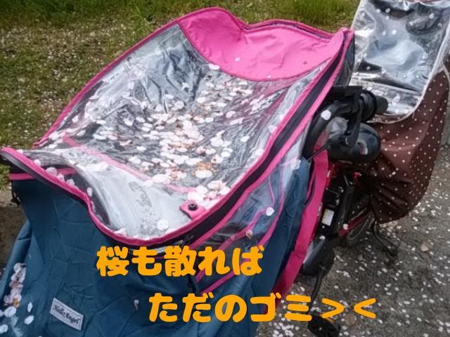桜の花が自転車にいっぱい積もってる