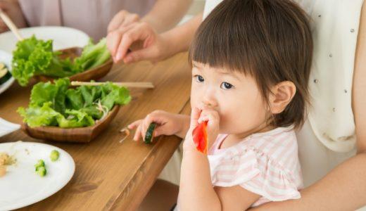 子供がご飯食べない原因と対策☆分かっちゃいても難しいので期待しすぎ禁物
